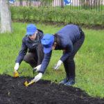 Стала известна доля оставшихся без работы из-за коронавируса россиян