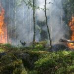 Дрозденко поручил усилить меры пожарной безопасности на стройках